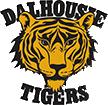 Dal Tigers